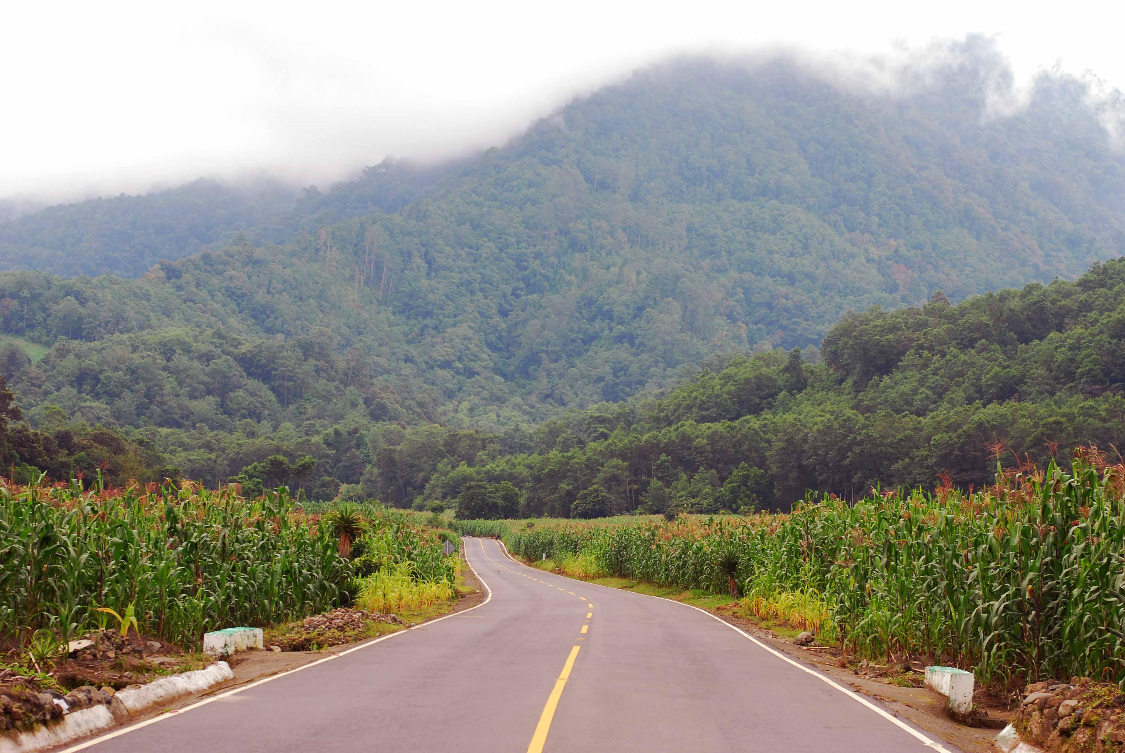 Choosing A Spanish School In San Pedro Guatemala Dftm Travel