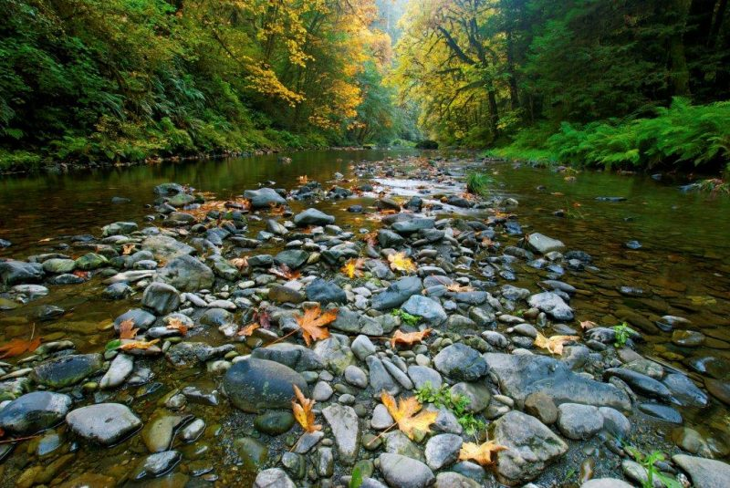 most beautiful campsites in the us