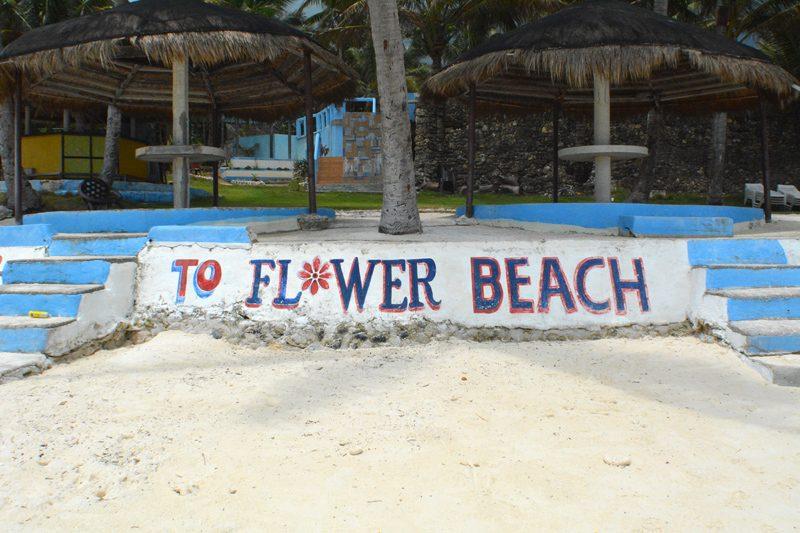 flower-beach-resort-anda-11