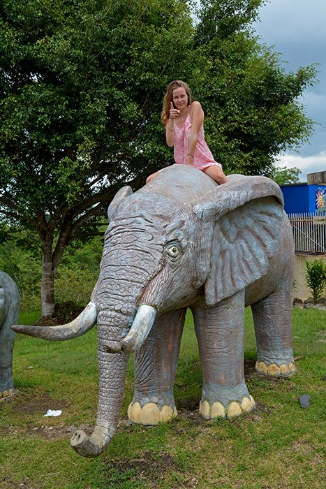 responsible animal tourism