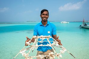 protecting coral reef Maldives