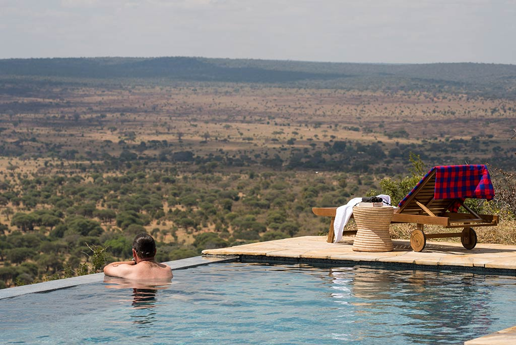 Yellow Zebra Safari Lemala Mpingo Ridge Pool