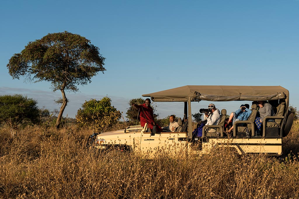 Tanzania Safari Experience with Yellow Zebra Safaris