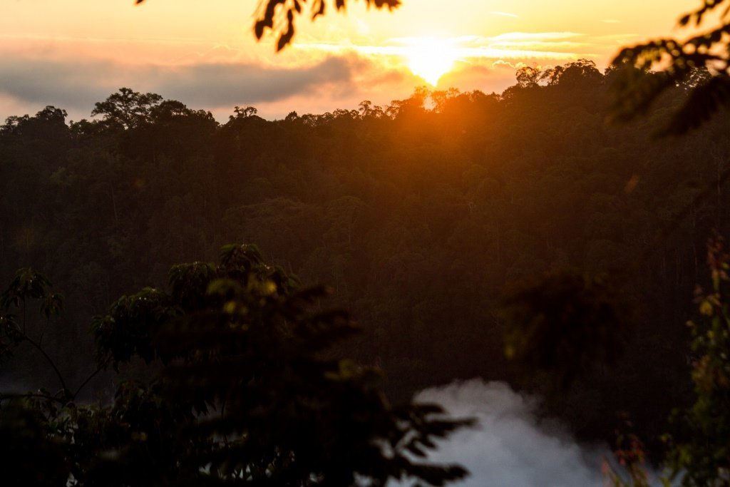 Kerinci Seblat Nationa lPark Sumatra