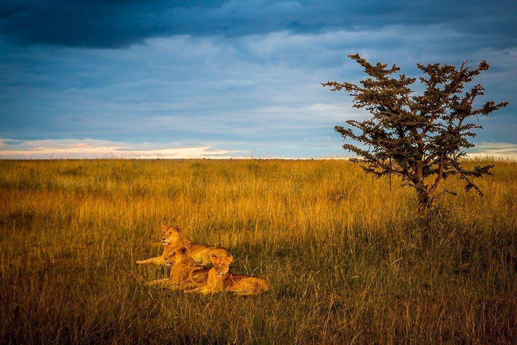 responsible tourism Kenya