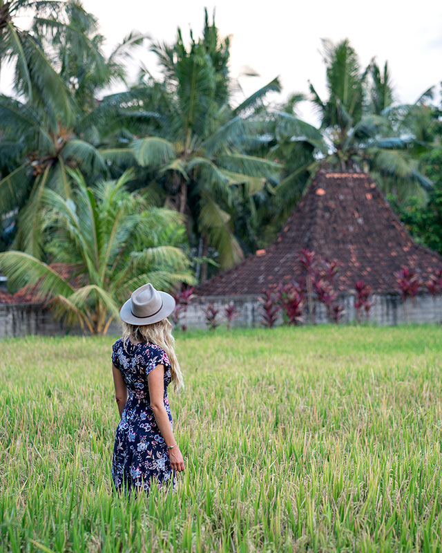 Ubud Bali attractions