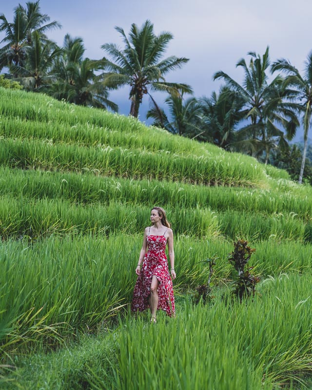 best rice terraces in Bali