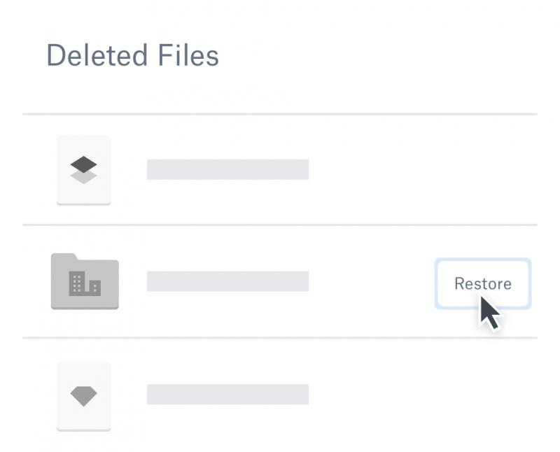 Cloud Storage Recover Files DropBox