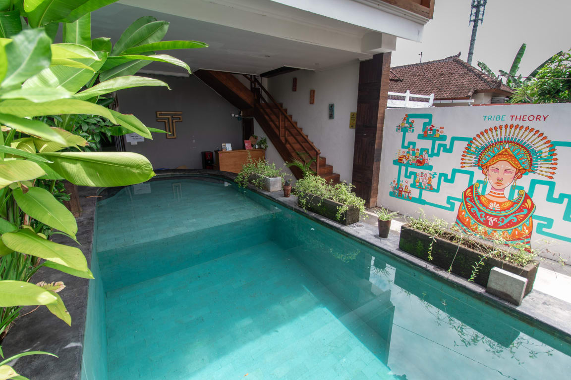 tribe theory hostel canggu
