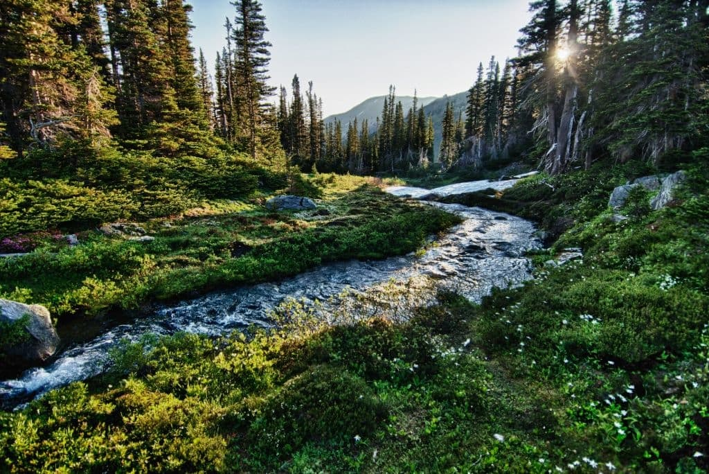 2 day itinerary olympic national park